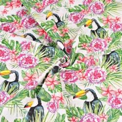 tukany z różowymi kwiatami na białym tle