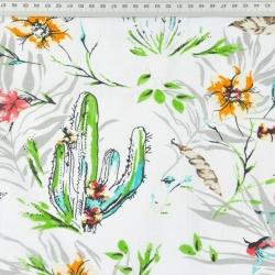 kaktusy z kwiatkami na białym tle