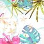 kwiaty amarantowe z liśćmi monstera na białym tle