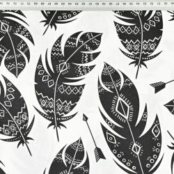 piórka azteckie czarne na białym tle