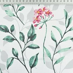 kwiaty różowe z zielono szarymi liśćmi na białym tle