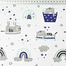 kotki szaro miętowo granatowe z tęczą na białym tle