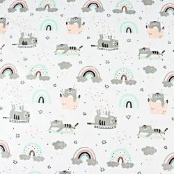 kotki szaro miętowo morelowe z tęczą na białym tle