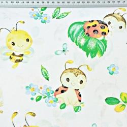 biedronki z pszczółkami na białym tle