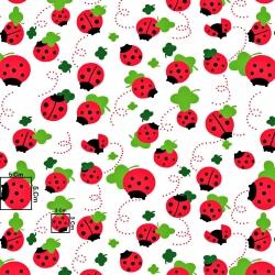 Tkanina w biedronki czerwone z listkiem na białym tle