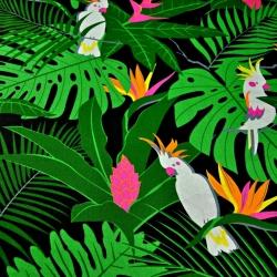 Tkanina w papugi białe na zielonych liściach na czarnym tle