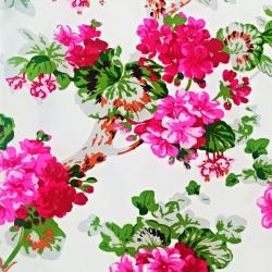 Tkanina w kwiaty pelargonie różowe na białym tle