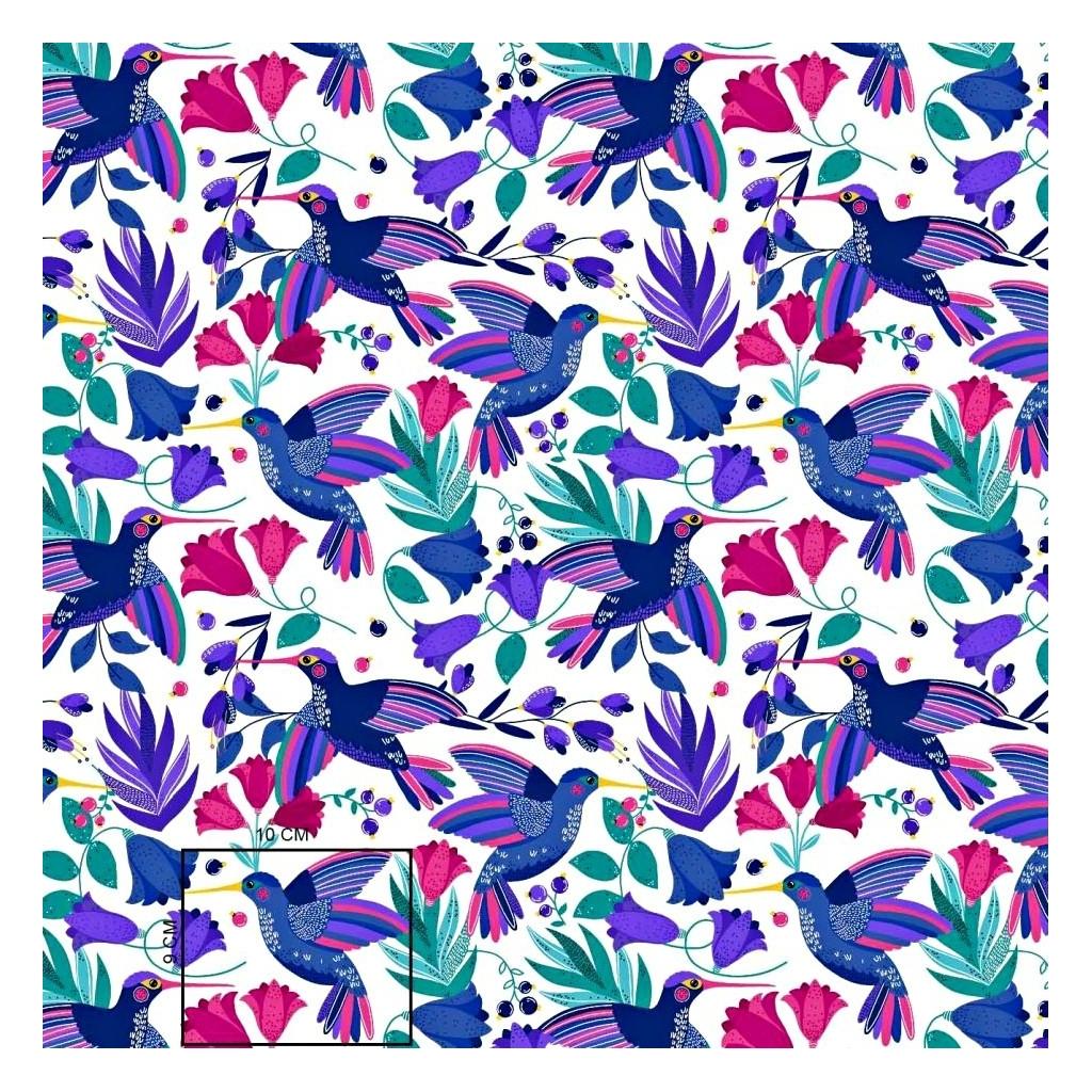 Tkanina kolibry szafirowo różowe na białym tle