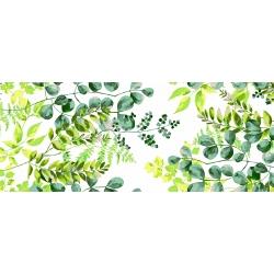 Tkanina liście eukaliptusa zielone na białym tle