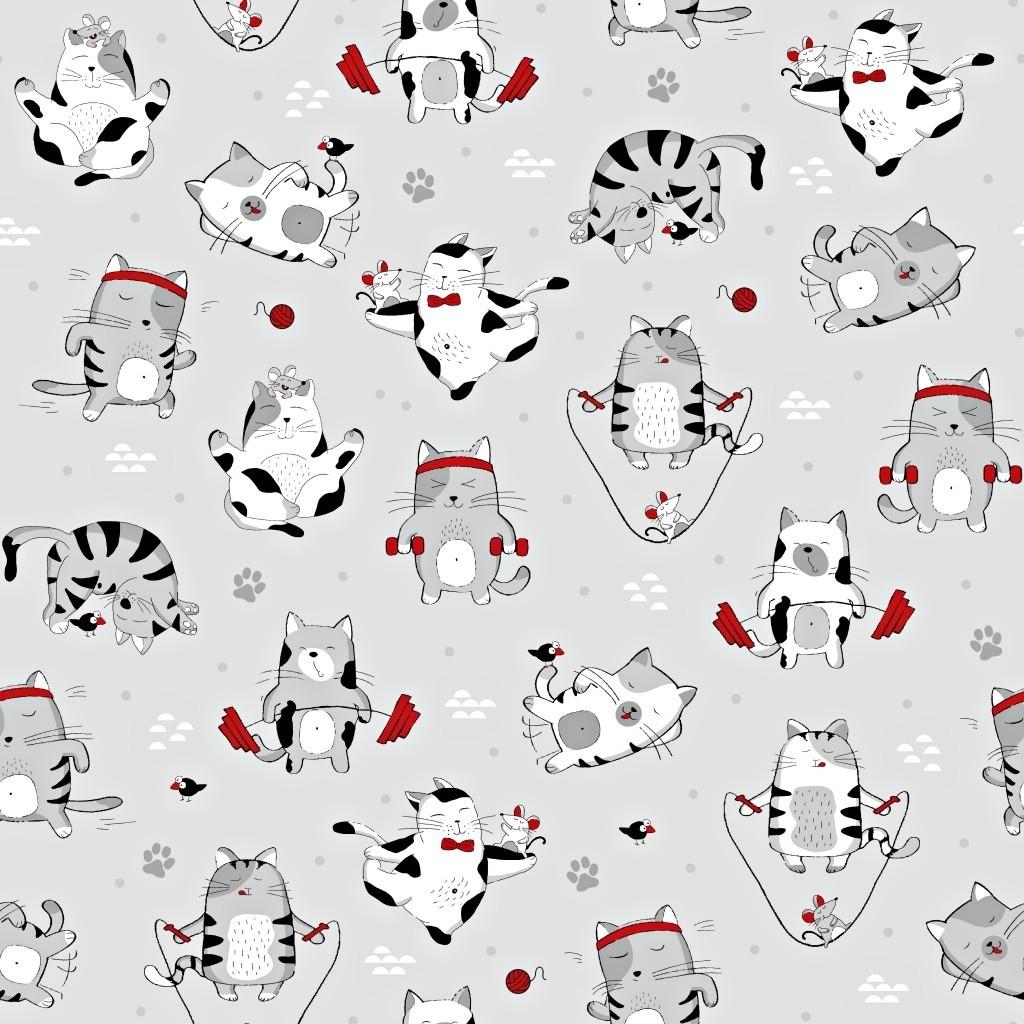Tkanina w koty FIT czerwono szare na szarym tle