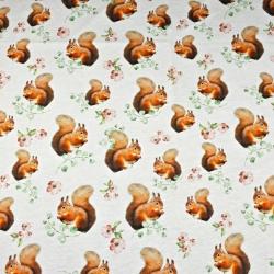 Dzianina bawełniana Jersey druk cyfrowy - wiewiórki na białym tle
