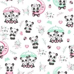 pandy z parasolem na białym tle