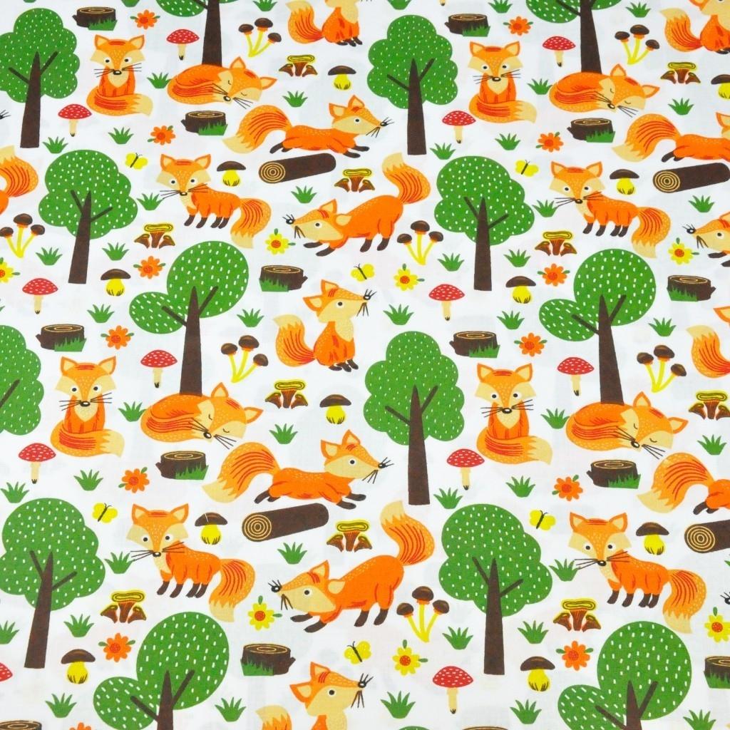 liski w lesie na białym tle