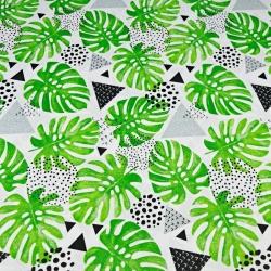 liście monstera zielone z szarymi trójkątami na białym tle