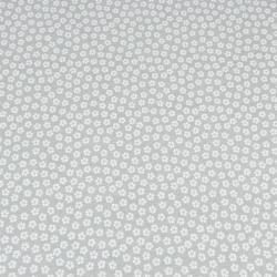 koniczyna MINI biała na szarym tle