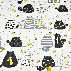kotki szalone w pasach z żółtym na białym tle