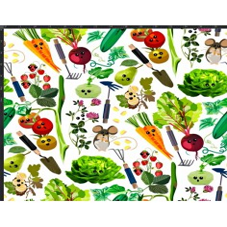 Dzianina Jersey druk cyfrowy - warzywa na straganie