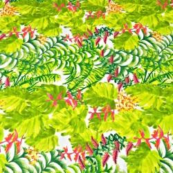 liście zielone paproci ze storczykiem różowy na białym tle