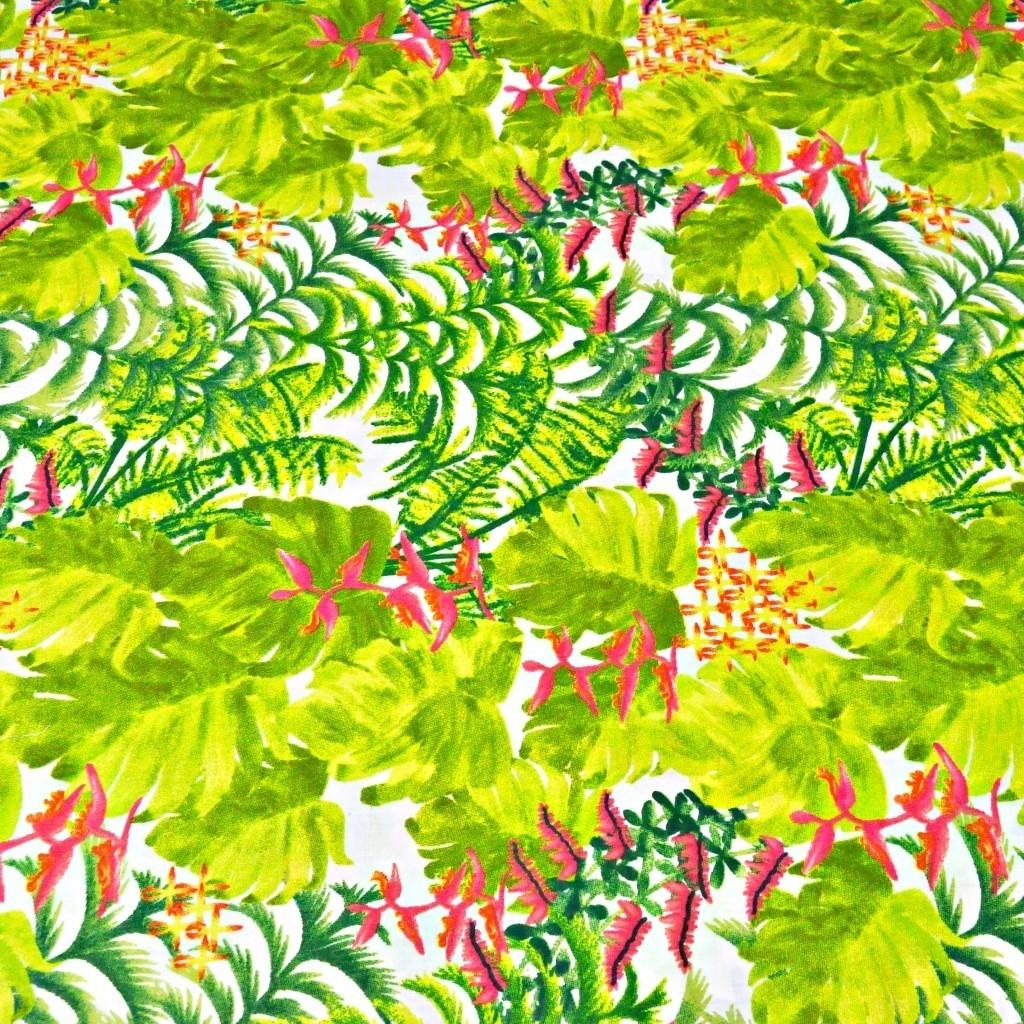 liście zielone palmowe ze storczykiem różowy na białym tle