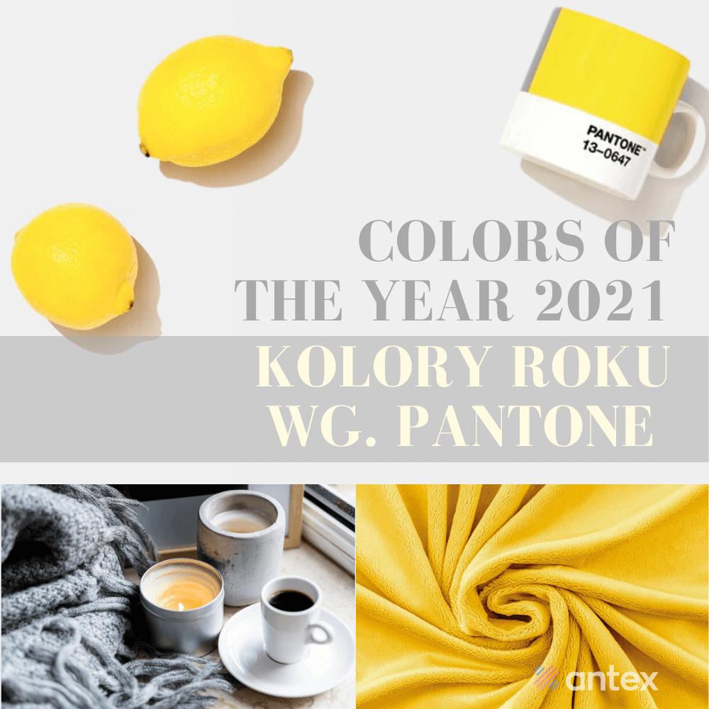 Modne kolory Pantone 2021: znajdź tkaniny w modnych kolorach!