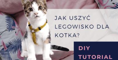 DIY tutorial: wygodne legowisko dla psa i kota!